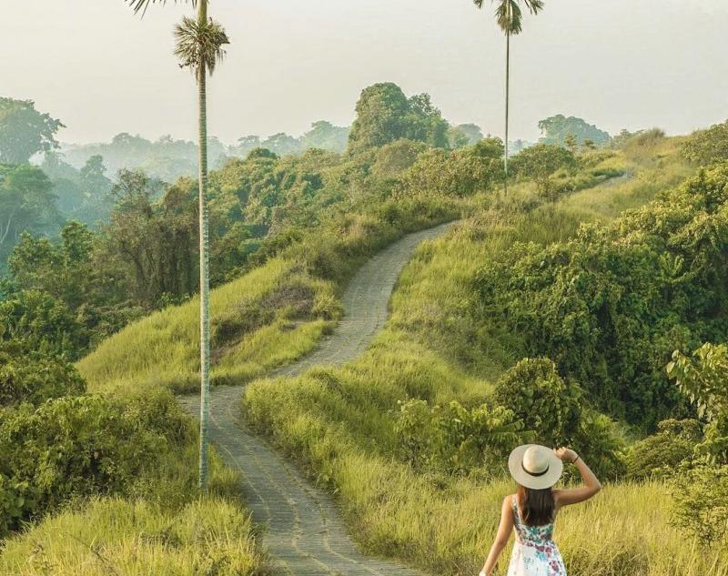Campuhan Ridge in Ubud