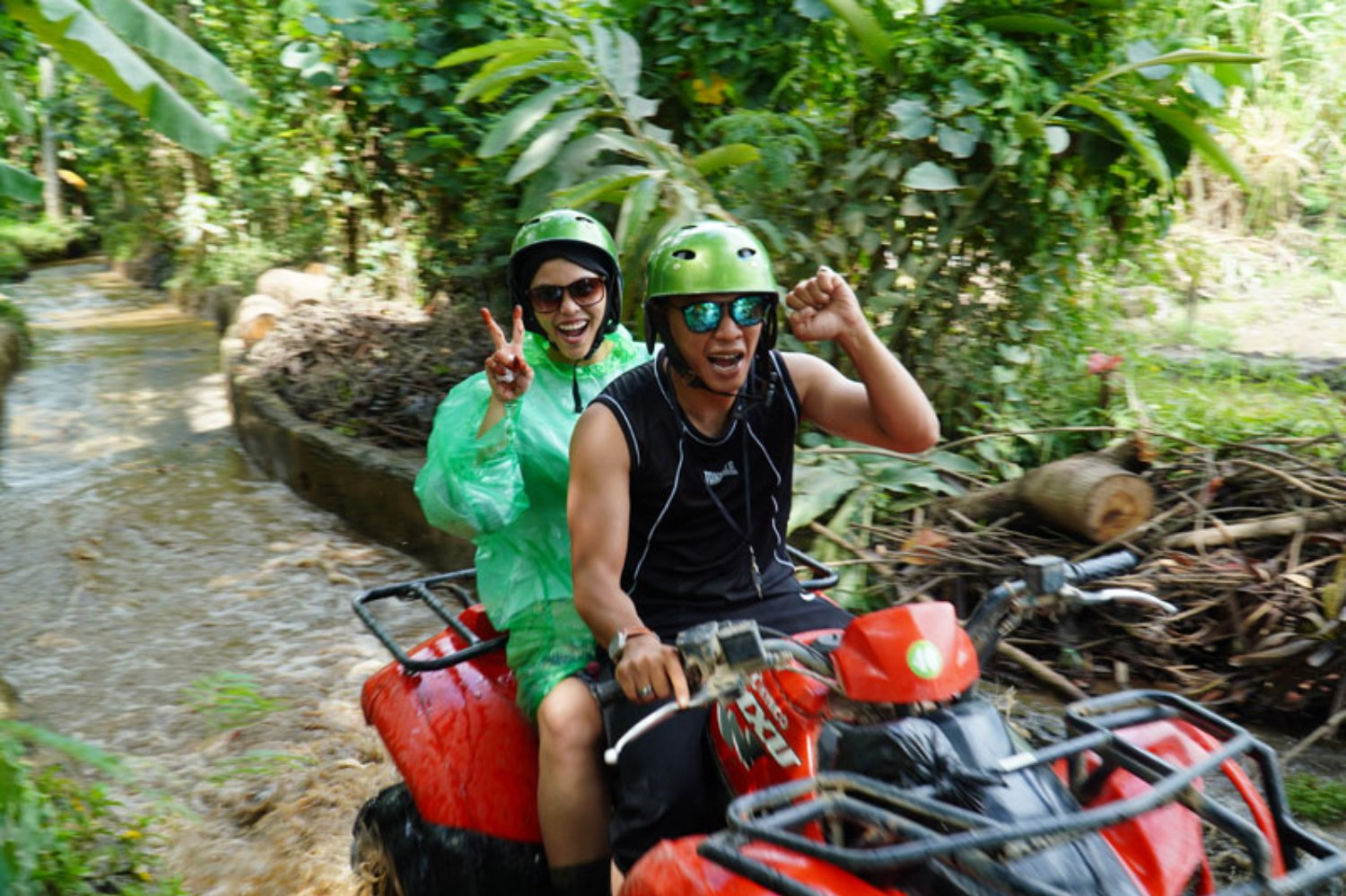 Green Forest in Atv Riding Adventure