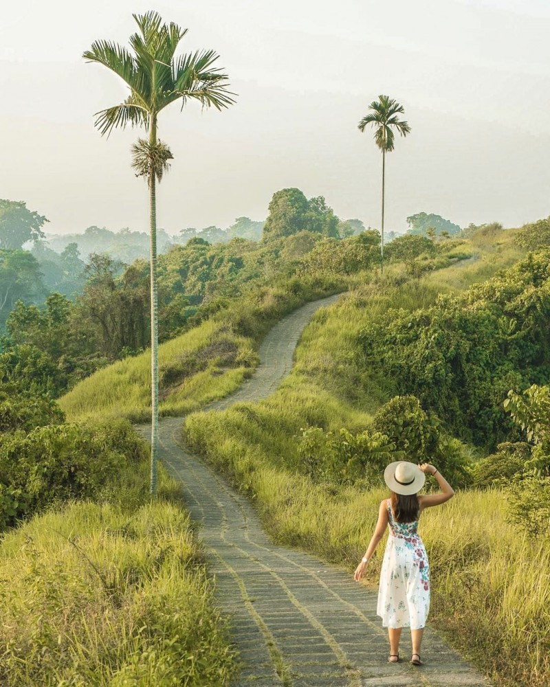 Campuhan Ridge in Ubud